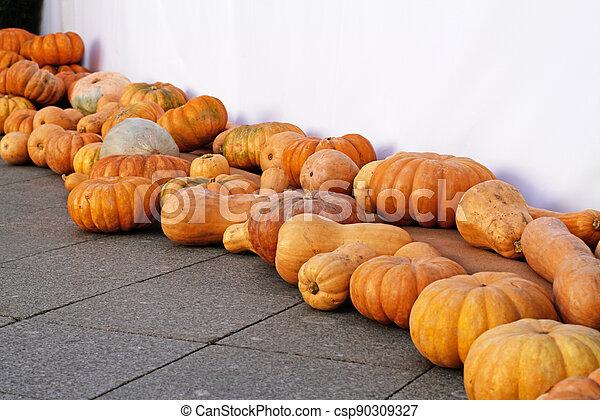 Pumpkins on asphalt as autumn decoration at market place - csp90309327