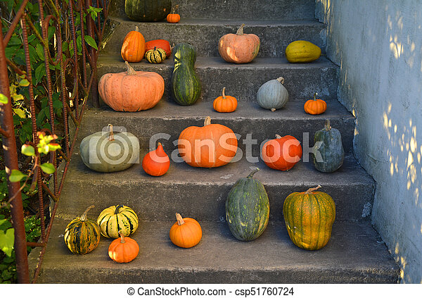 Pumpkins on the old outdoor stairs - csp51760724