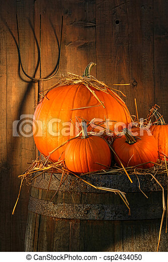 Pumpkins on wine barrel - csp2434050