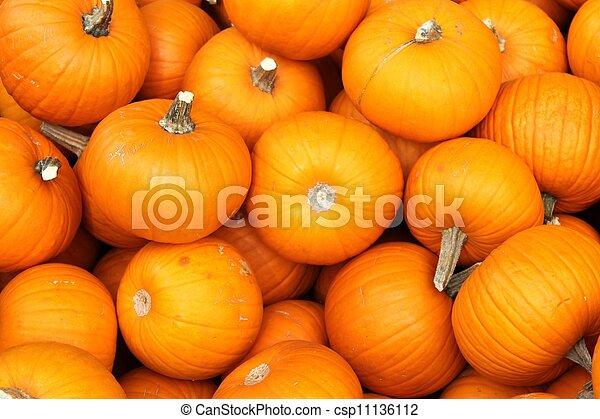 Pumpkins - csp11136112