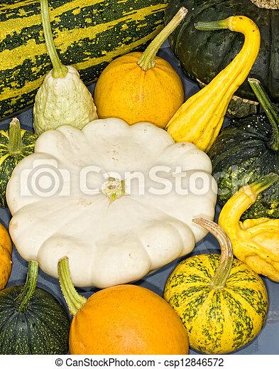 Pumpkins - csp12846572