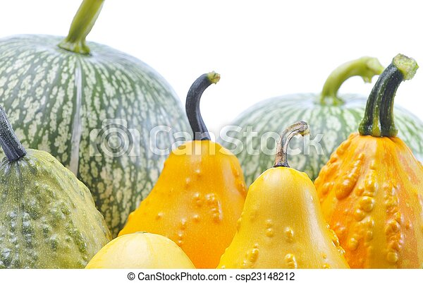Pumpkins. - csp23148212