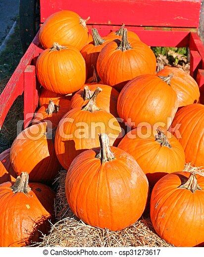 Pumpkins - csp31273617