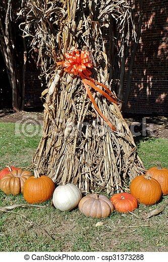 Pumpkins - csp31373288