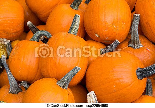Pumpkins - csp22654960