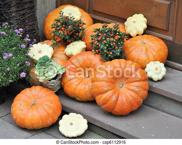 Pumpkins - csp6112916