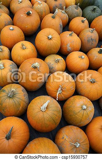 Pumpkins - csp15930757