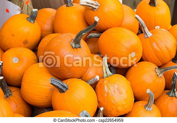 Pumpkins - csp22654959