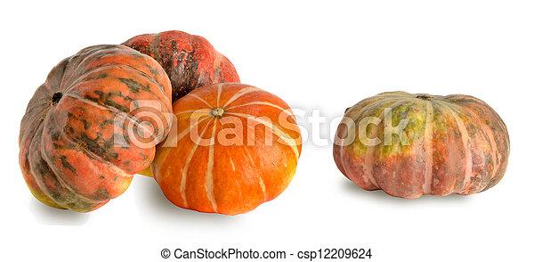 Pumpkins - csp12209624