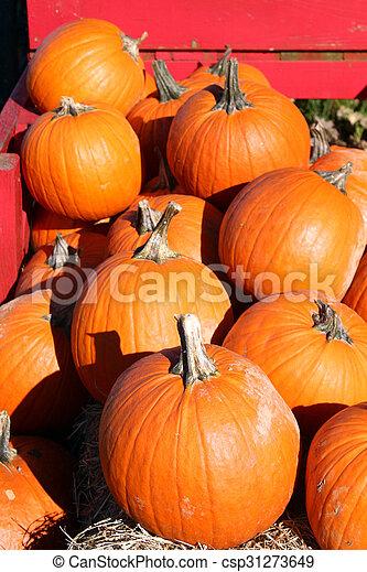Pumpkins - csp31273649