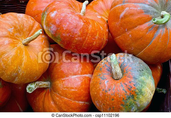pumpkins - csp11102196