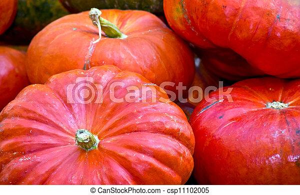 pumpkins - csp11102005