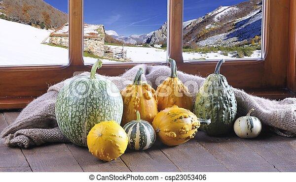 Pumpkins. - csp23053406
