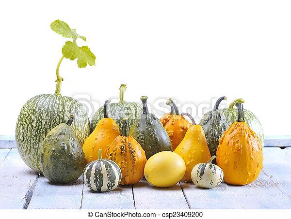 Pumpkins. - csp23409200