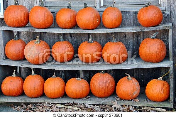Pumpkins - csp31273601