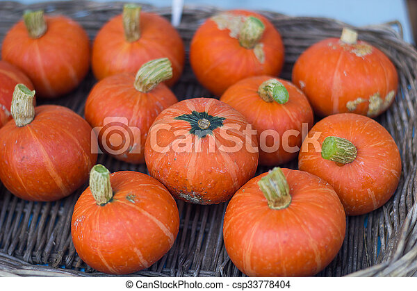 Pumpkins. - csp33778404