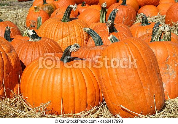 Pumpkins - csp0417993