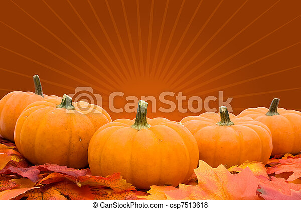 Pumpkins with fall leaves - csp7513618