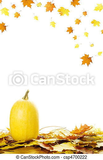 Pumpkins with fall leaves - csp4700222