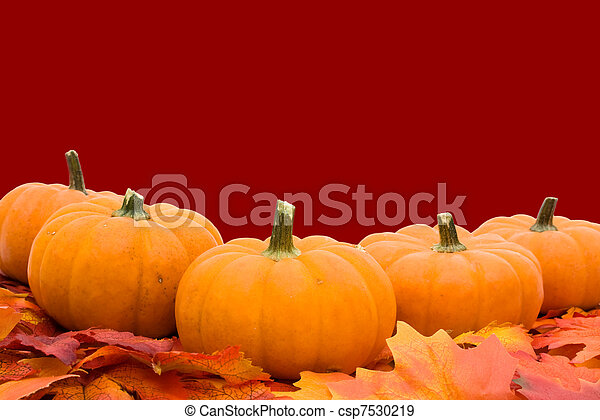 Pumpkins with fall leaves - csp7530219