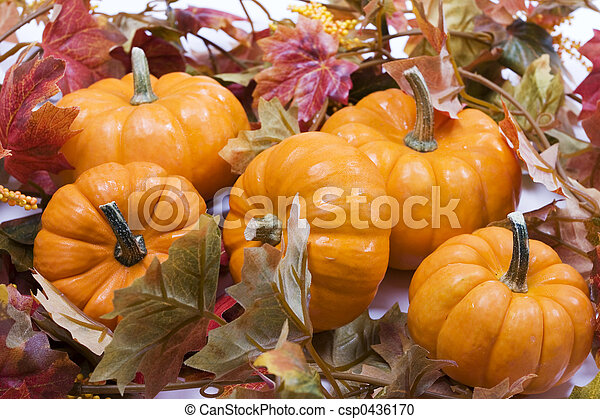 Pumpkins with fall leaves - csp0436170