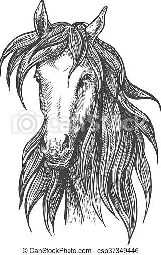 Pur sang croquis athl tique symbole cheval course - Dessin cheval de course ...