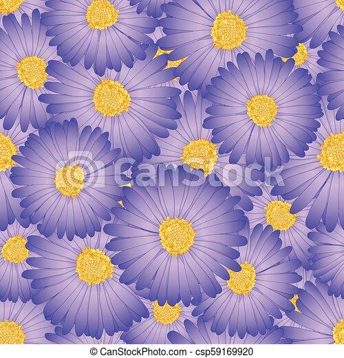 Purple Aster, Daisy Flower Seamless Background - csp59169920