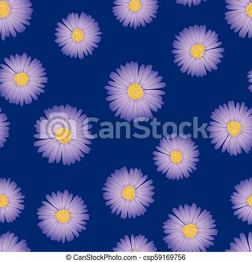 Purple Aster, Daisy Seamless on Indigo Blue Background. - csp59169756