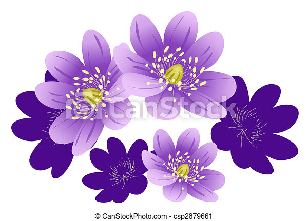 Illustration drawing of purple flower in white background clipart purple flower csp2879661 mightylinksfo