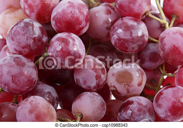 Purple Grapes Fund Large And Delicious Purple Grapes Canstock