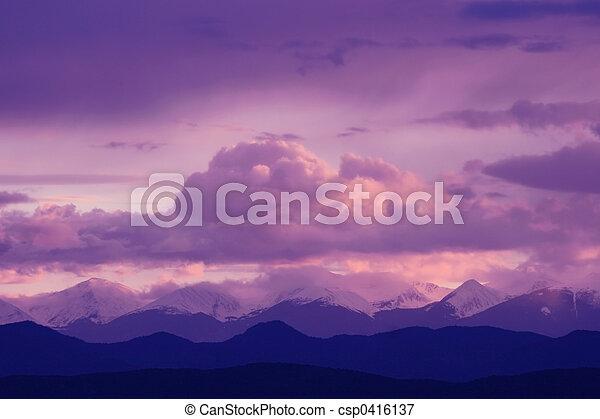 Purple Majesty - csp0416137