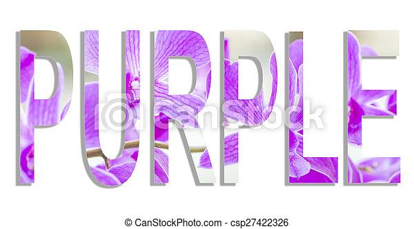 Purple - csp27422326