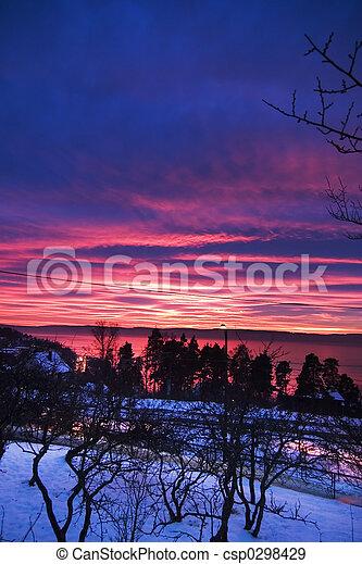 Purple Sunset - csp0298429