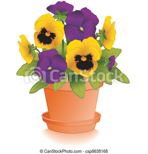 purple gold pansies clay flowerpot purple and yellow pansy flowers rh canstockphoto com animated panda clipart Pansy Outline