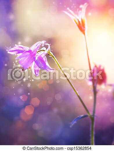 purpur, abstrakt, fokusera, flowers., blommig, mjuk, design. - csp15362854