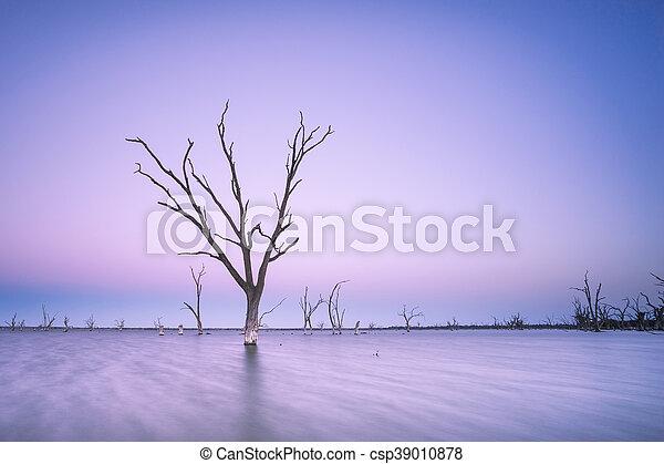 purpurowy, zmierzch - csp39010878