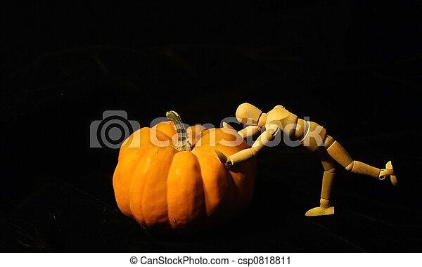 Pushing the Great Pumpkin (Cucurbita moschata) - csp0818811