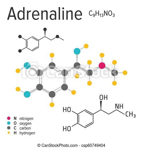 La Fórmula Química De La Molécula De Adrenalina Vectorial