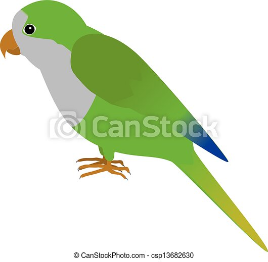 parakeet illustrations and stock art 864 parakeet illustration and rh canstockphoto com Cartoon Parakeet Cartoon Parakeet