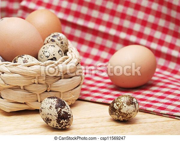 Quail and hen eggs - csp11569247