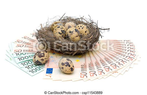 quail eggs and euro on white background - csp11543889