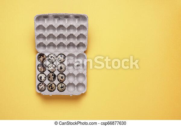 quail eggs in carton box on yellow background - csp66877630