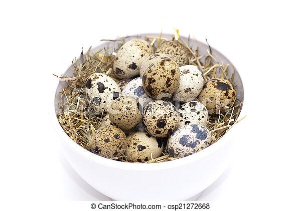 Quail eggs - csp21272668