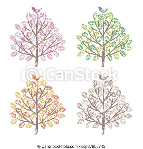 quatre saisons, bir, arbres, coloré - csp37955743