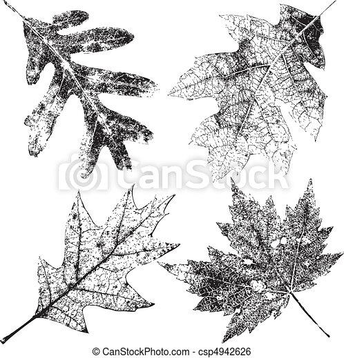 quatro, grungy, folhas, outono - csp4942626