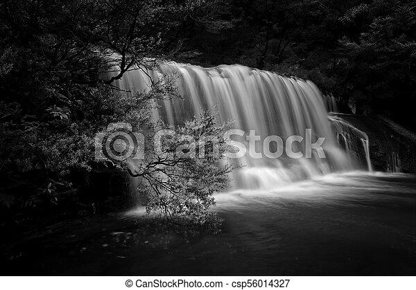 Queens Cascade Waterfall Blue Mountains - csp56014327