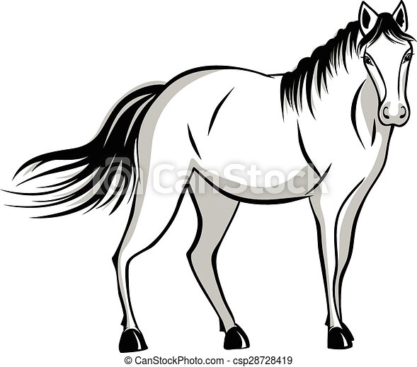 quietly standing horse black and gray color vector clip art rh canstockphoto com horse head clipart black and white horse riding clipart black and white