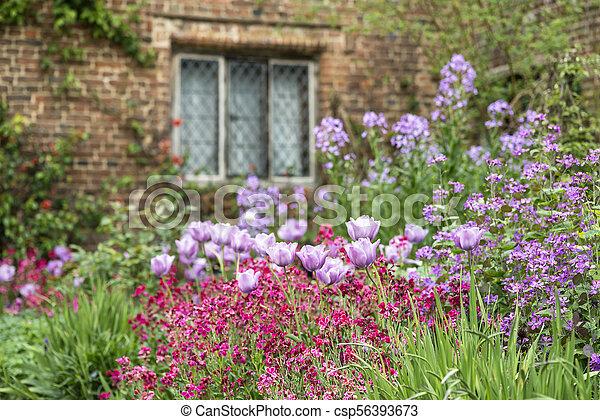 Quintessential vibrant english country garden scene landscape with quintessential vibrant english country garden scene landscape with fresh spring flowers in cottage garden csp56393673 mightylinksfo
