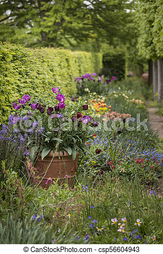 Quintessential Vibrant English Country Garden Scene Landscape With
