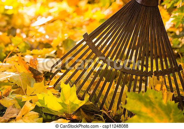 râteau, pousse feuilles - csp11248088